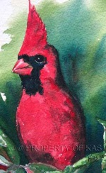 Watercolor Art - Cardinal
