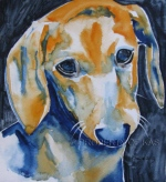 Watercolor Art - Dixie - Doxie