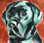 Watercolor Art - Lucky - Lab