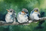 Watercolor Art - Three Chicks
